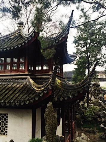 Lion Grove Garden - Suzhou